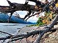 Lago Futalaufquen-2020.jpg