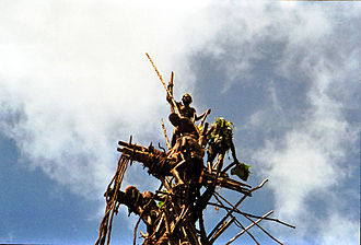 Land diving - The platforms are at several different heights, with the most experienced diver jumping from the top.