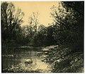 Landscape (Andreyev).jpg