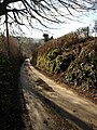 Lane to Combe - geograph.org.uk - 1184190.jpg