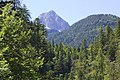 Leutascher Geisterklamm - panoramio (16).jpg