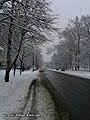 Liatoshinskiy str. - panoramio (1).jpg