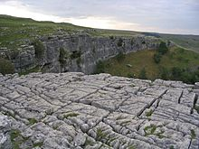 Limestone pavement above Malham Cove.jpg