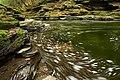 Little Rocky Glen Preserve (5) (8173760569).jpg