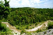 Little Rouge River Lookout.jpg
