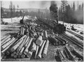 "Loaded log train on narrow gauge railroad of Biles Colemena Lumber Co. at ""big landing"" on the old Omak Creek unit.... - NARA - 298701.tif"