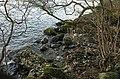 Loch Lomond - geograph.org.uk - 1066136.jpg