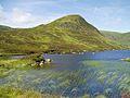 Loch Skeen - geograph.org.uk - 1471103.jpg