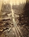 Logging operation showing a log chute, Washington, ca 1889 (BOYD+BRAAS 70).jpg