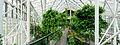 London Barbican conservatory Wikimania 2014 6602 pano 5.jpg