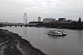 London mudflat thames at lambeth bridge 30.01.2012 14-43-11.JPG