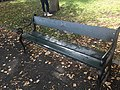 Long shot of the bench (OpenBenches 8603-1).jpg