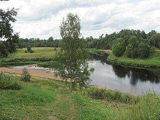 Kholmsky District, Novgorod Oblast District in Novgorod Oblast, Russia
