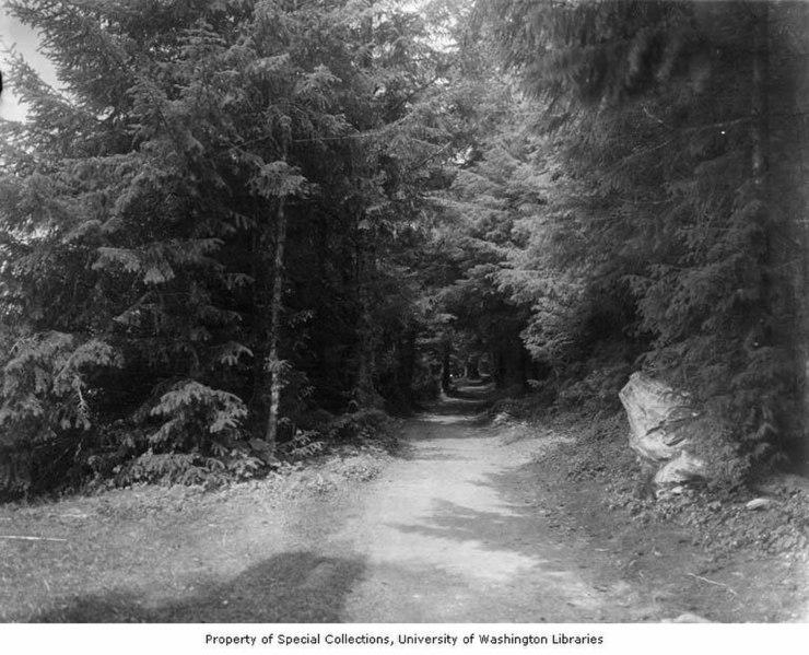 File:Lovers' Lane in Sitka National Historical Park, Sitka, ca 1914 (CURTIS 1868).jpeg