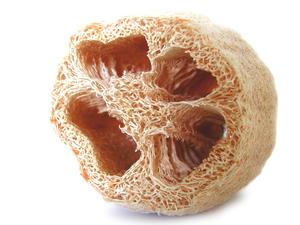 Tawashi - A luffa sponge, called hechima tawashi in Japanese
