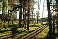 Maclean creek Kananaskis Alberta Canada (27725998246).jpg