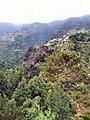 Madeira - Santana (2825391492).jpg
