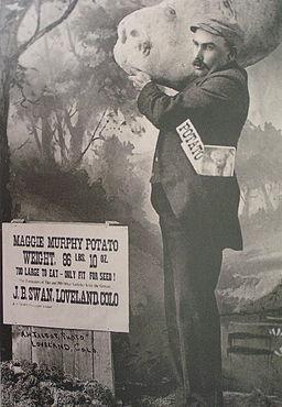 MaggieMurphyhoax