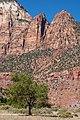 Magnificent landscape in Zion (8078515803).jpg