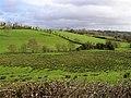 Makenny Townland - geograph.org.uk - 349743.jpg