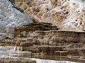 Mammoth Hot Springs - panoramio - R. Sieben.jpg