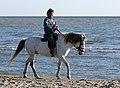 Man riding in Dune Harbiş, Karataş 01.jpg