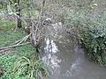 Manaurie ruisseau de Manaurie amont.JPG