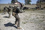 Marines aim for combat marksmanship proficiency 160516-M-ML847-157.jpg