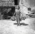 """Matilda iz Slavč nese v zejih na """"bojinču"""" peso 1953.jpg"""