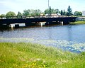 McIntyre Floodway Lily Pads Thunder Bay.jpg