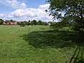 Meadow by the Severn - geograph.org.uk - 1320665.jpg