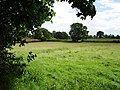 Meadows, Mill Farm - geograph.org.uk - 197882.jpg