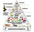 Med-diet-pyramid.jpg