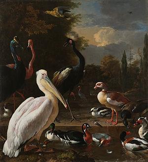 Adriaen Coorte - Image: Melchior d'Hondecoeter Een pelikaan en ander gevogelte bij een waterbassin, bekend als 'Het drijvend veertje' Google Art Project