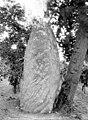 Menhir dit La Pierre Longue - Vue d'ensemble - Saumur - Médiathèque de l'architecture et du patrimoine - APMH00004935.jpg