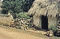 Mexico1980-245 hg.jpg