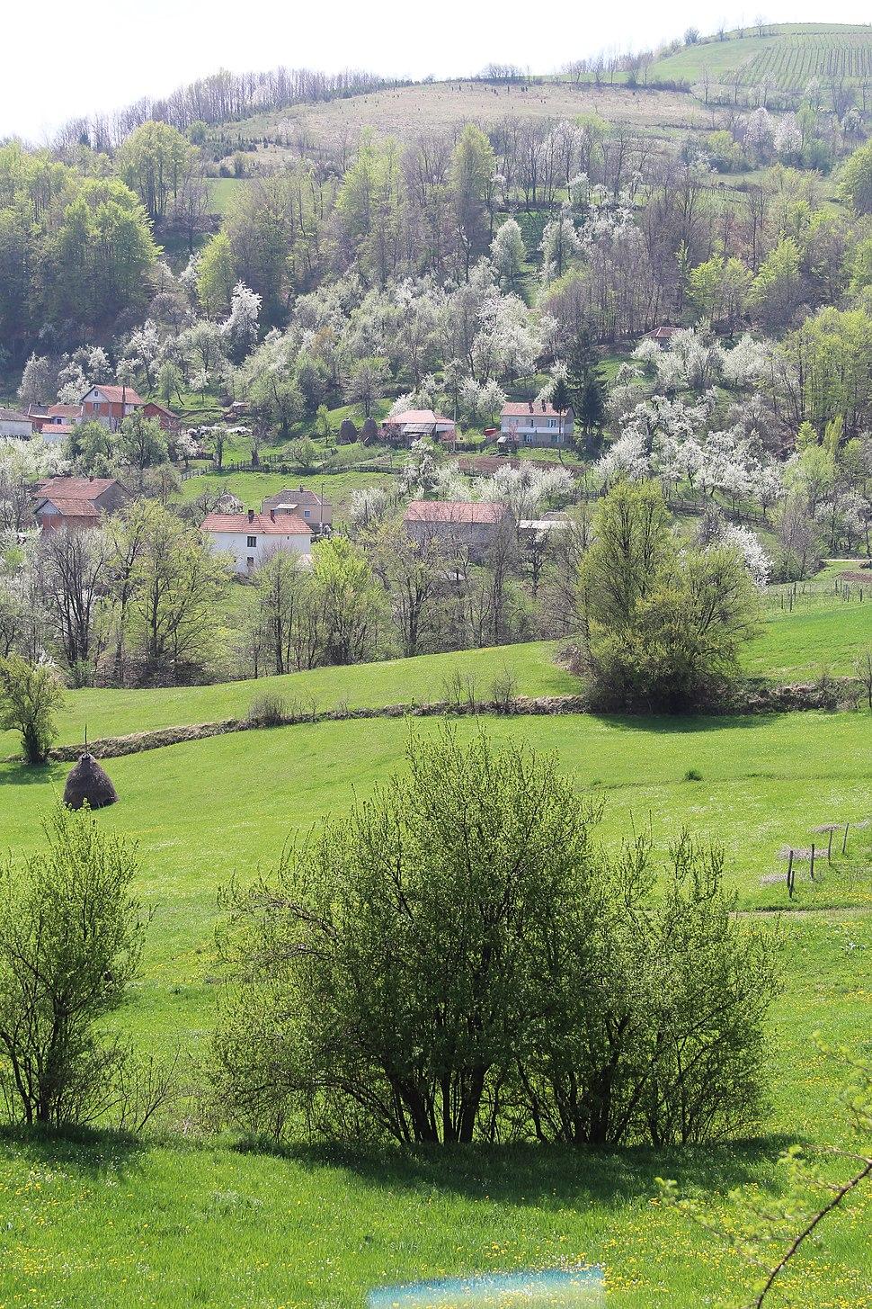 Mijači - opština Valjevo - zapadna Srbija - panorama 16