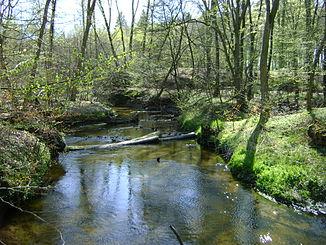 The Mogilica near Czarnowęsy (Zarnefanz)