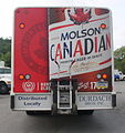 Molson Beer Mickey Beverage Bodies.jpg