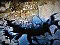 Momias de 3000 años en las inmediaciones del Salar de Uyuni Territorio Llica 20.jpg
