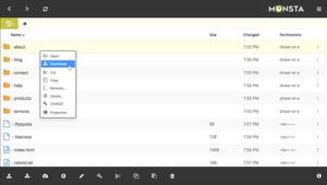 Monsta FTP Screenshot.png