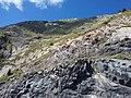 Mont Gargas (détails).jpg