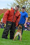 Month of Military Child MWD demonstration 150414-F-OH119-248.jpg