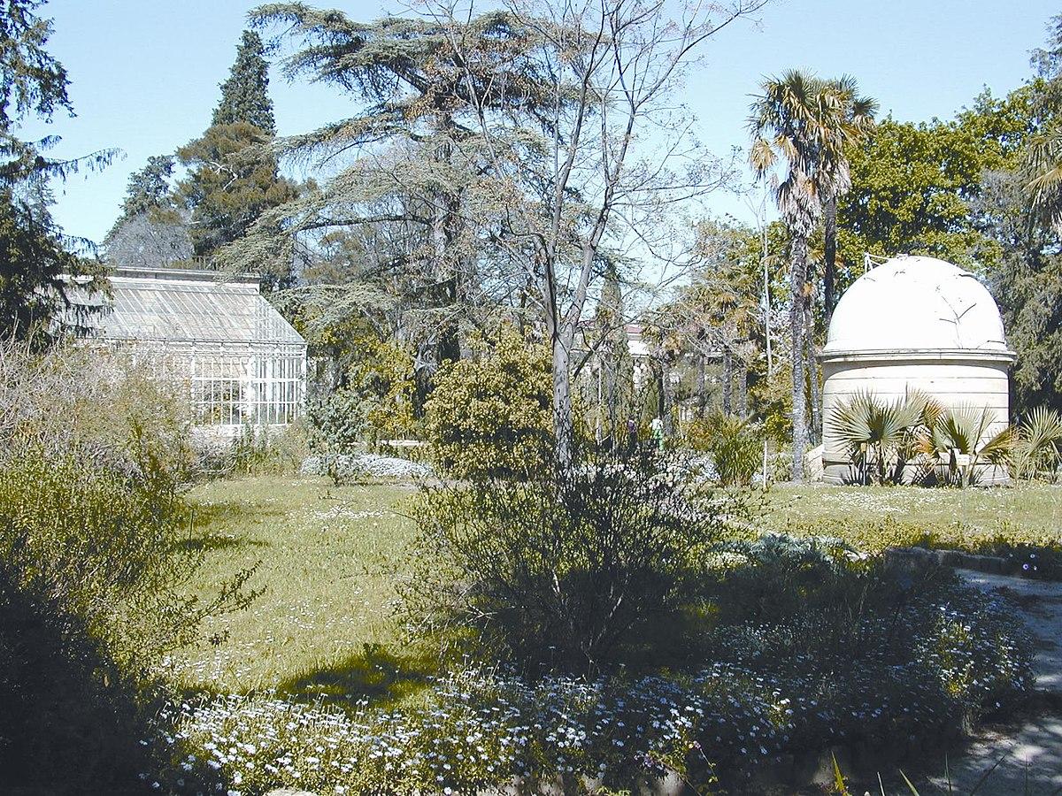 Orto botanico di montpellier wikipedia - Le jardin des plantes montpellier ...
