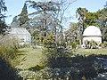 Montpellier jardin plantes2.jpg