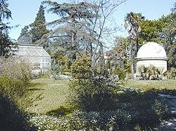 Jardin des plantes de montpellier wikipedia - Jardin des plantes de montpellier ...