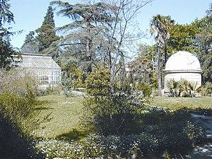 Jardin des plantes de Montpellier - General view of the garden