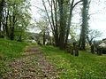 Mosbach-judenfriedhof5.jpg