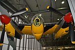 Mosquito From Front (37136256530).jpg