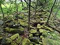 Mossend ruins - Barrmill.JPG